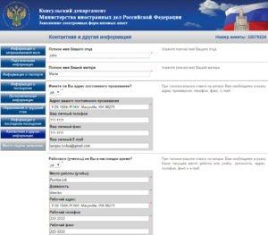 Заполнение электронной визовой анкеты - шаг 11