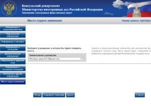 Заполнение электронной визовой анкеты - шаг 12