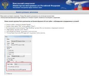 Заполнение электронной визовой анкеты - шаг 14
