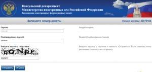 Заполнение электронной визовой анкеты - шаг 2