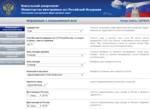 Заполнение электронной визовой анкеты - шаг 4