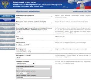 Заполнение электронной визовой анкеты - шаг 5