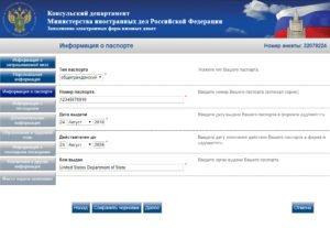 Заполнение электронной визовой анкеты - шаг 6