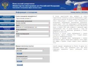 Заполнение электронной визовой анкеты - шаг 7