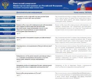 Заполнение электронной визовой анкеты - шаг 8