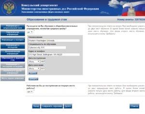 Заполнение электронной визовой анкеты - шаг 9